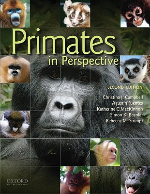 Primates in Perspective By Campbell, Christina J. (EDT)/ Fuentes, Agustin (EDT)/ Mackinnon, Katherine C. (EDT)/ Bearder, Simon K. (EDT)/ Stumpf, Rebecca M. (EDT)